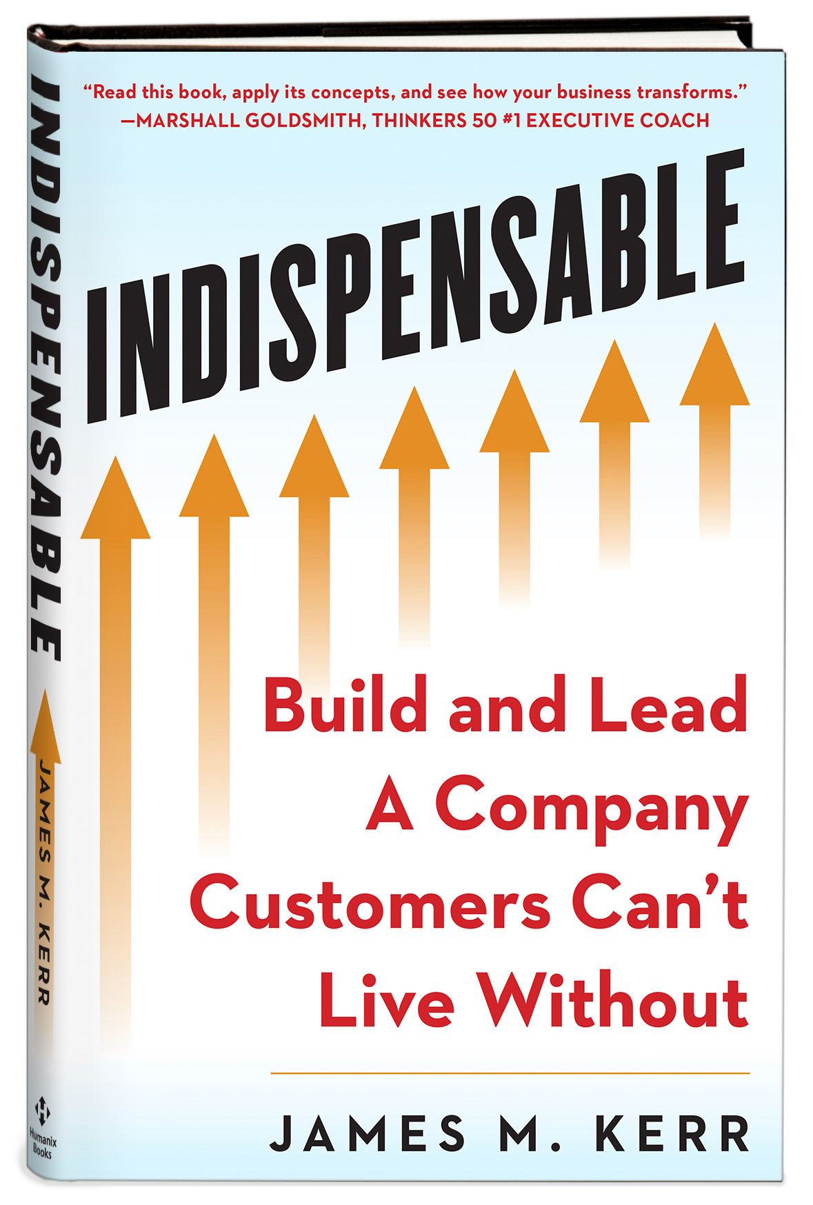 about indispensable consulting